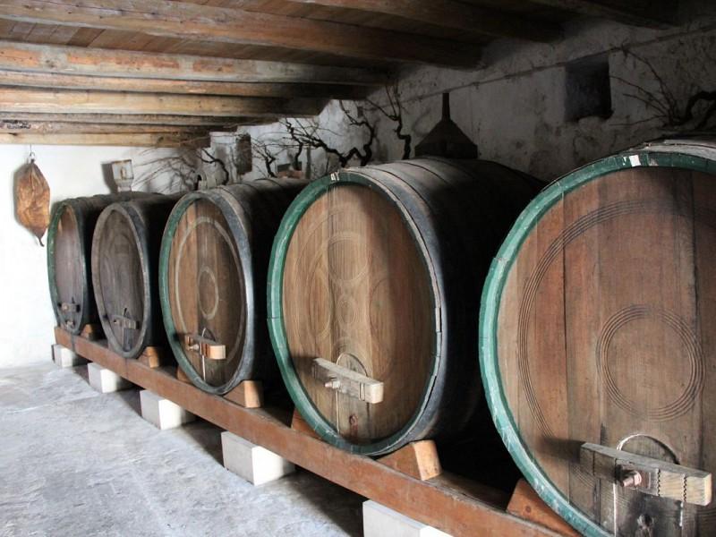 Počinju Dani konavoske zelene menestre, baštine i vina