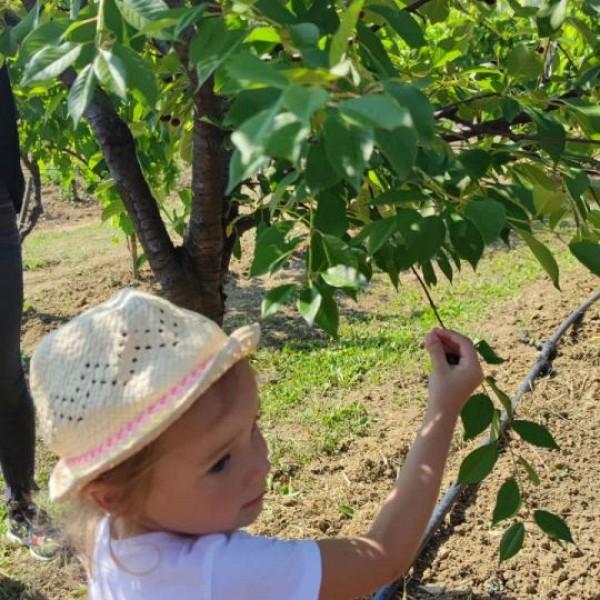 Agroturizam Konavle ugostio dubrovačku dječicu