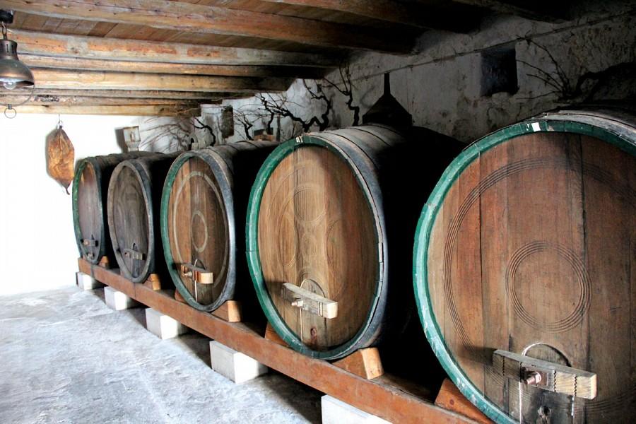 Crvik vinogradi i vinarija d.o.o.