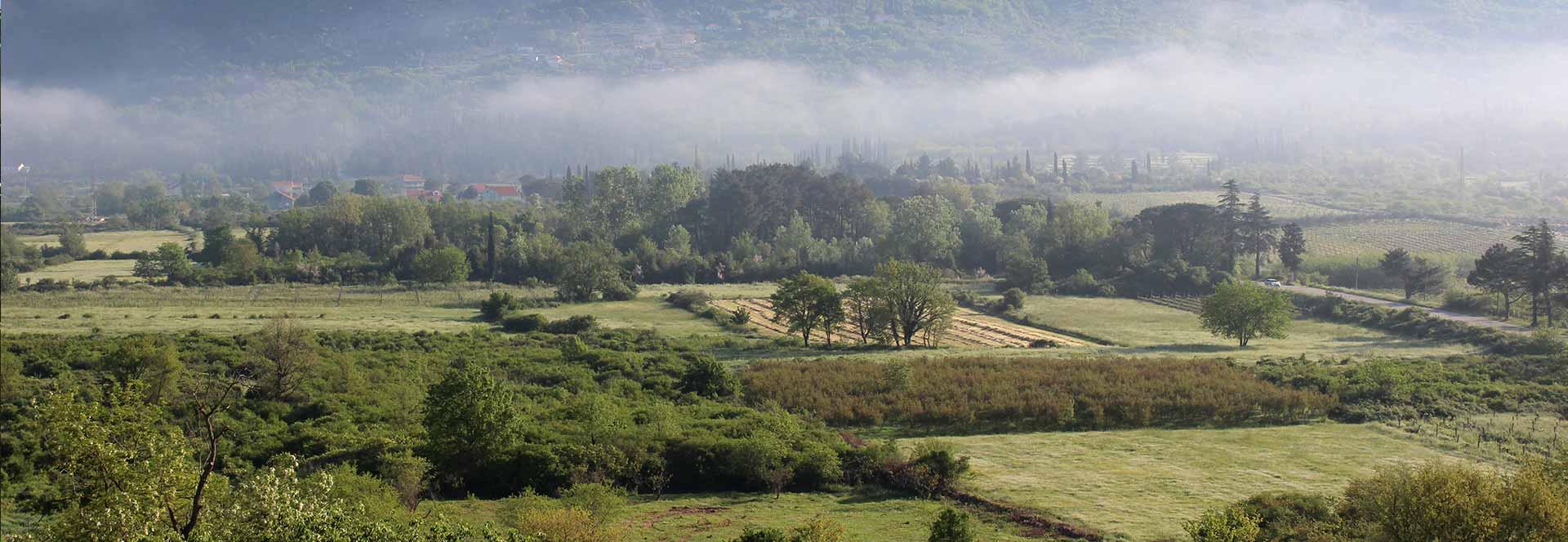 Konavle, Konavosko polje